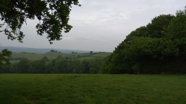 view of green fields, hedges and hills