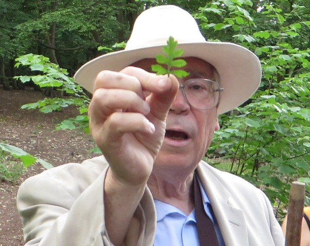 David Bevan discussing plant ID