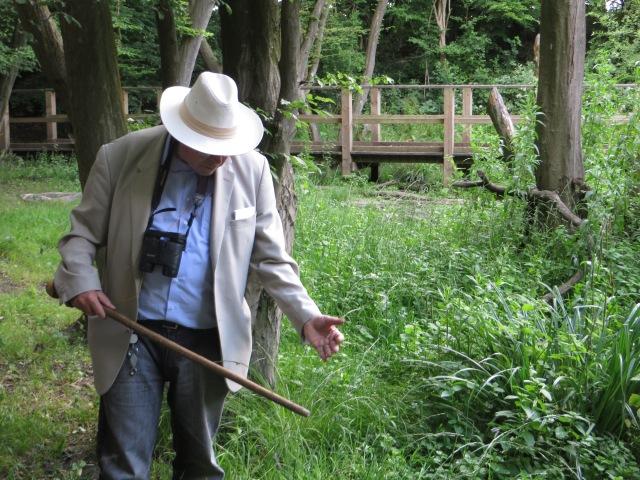 man discussing woodland flora