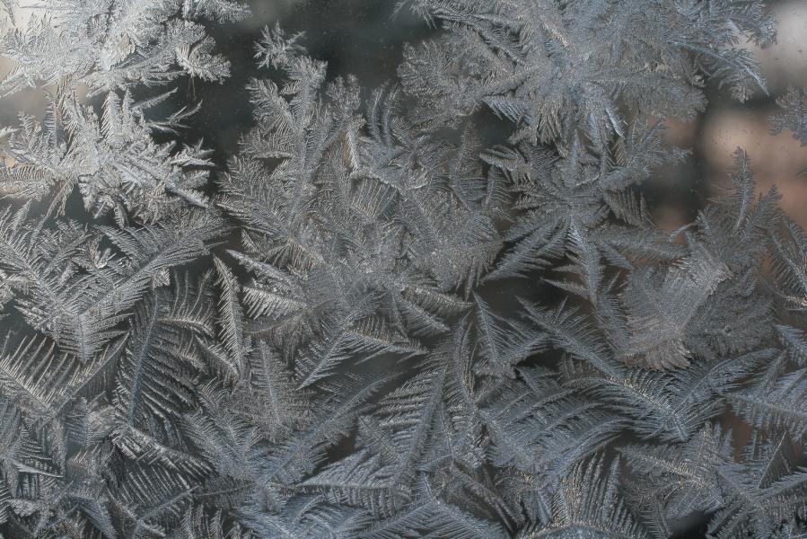 frost fractals