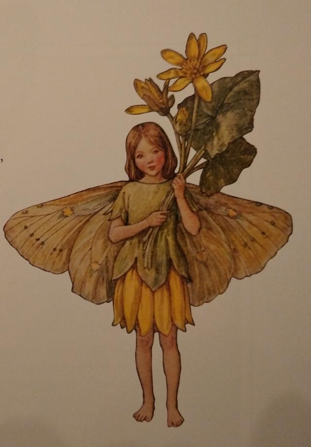 Celandine Flower Fairy of the Spring