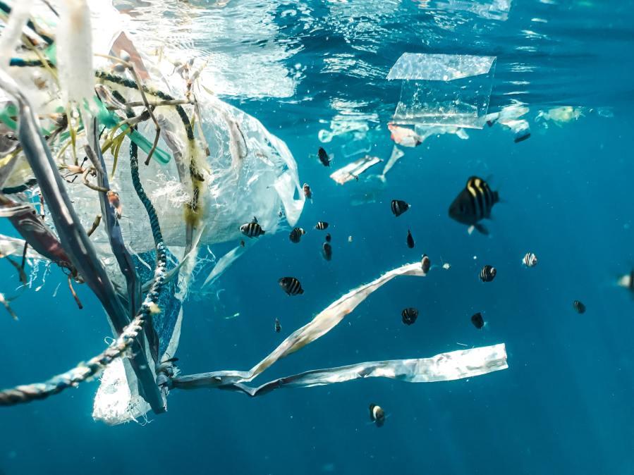 plastic rubbish in the ocean